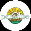 Paradise_Seeds_Filti_Cartine_Virgoz_Studio_Milano_Tattoo_Piercing_etno_shop