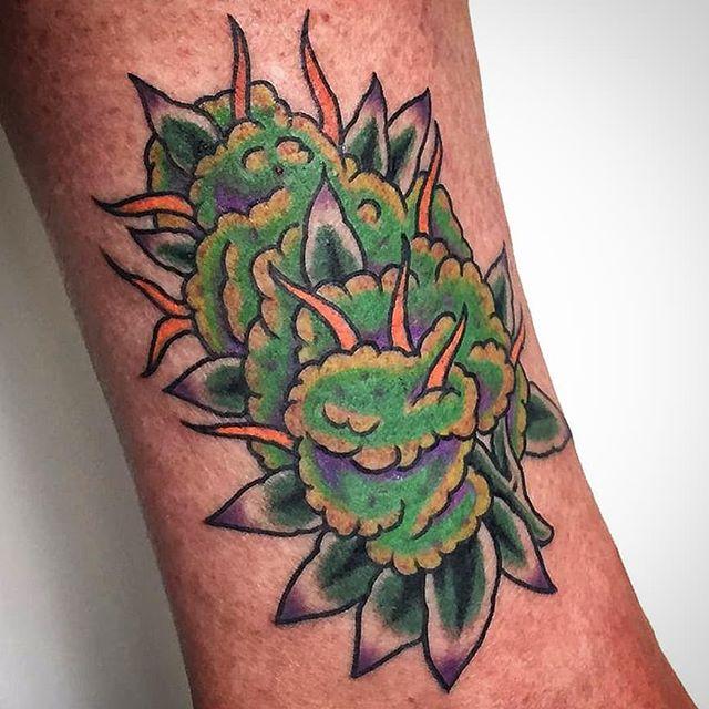 Tatuaggio, un bel cimone, appena eseguito da Antonio Blez. -